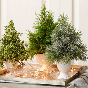 Christmas centerpieces than this electrocuted tray, which produce lights