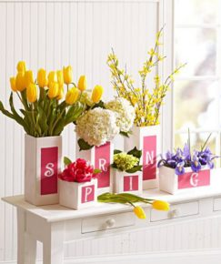 flowers in old boxes