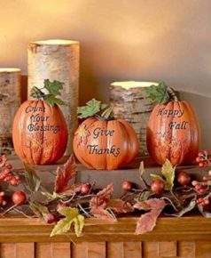 The messages of the plants and fruits Thanksgiving decor