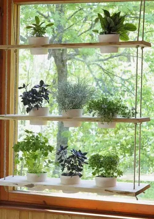 Hanging Window Shelf #window shelf #plants #homedecorimage
