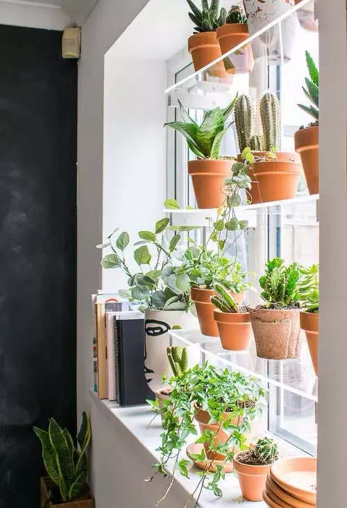 Reading Nook in Front of Window Shelf for Plants #window shelf #plants #homedecorimage
